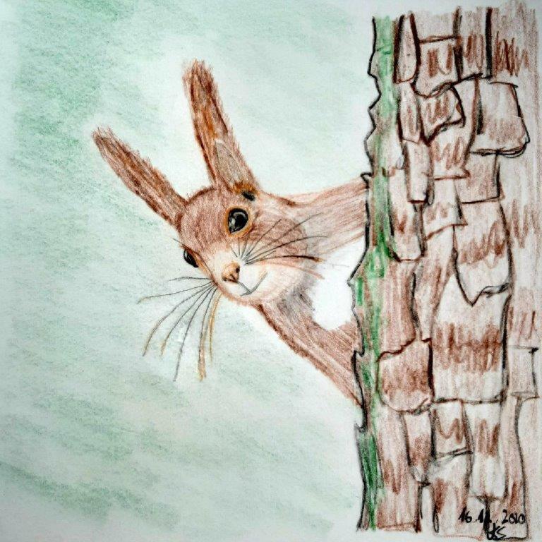 Eichhörnchen - Nature Journaling